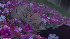 お花畑でお昼寝