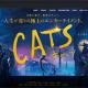 【賛否あるな】映画CATSはいいところも悪いところもあり